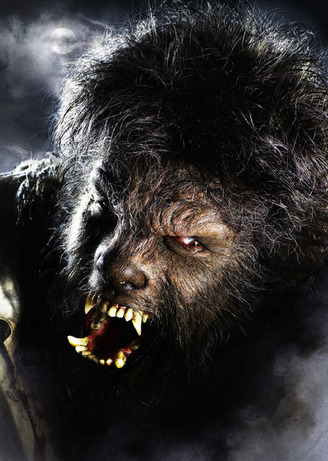 Wolfman1_5
